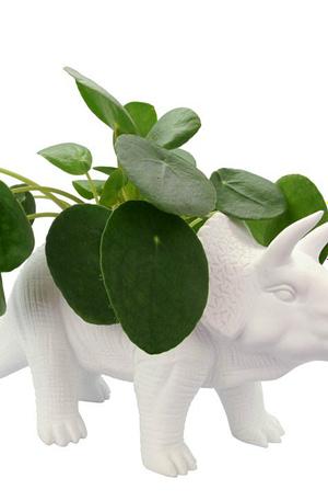 Dinosaurus Bloempot - Triceratops - Bitten