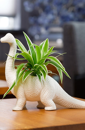 Dinosaurus Bloempot - Brachiosaurus