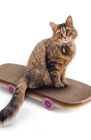 Skateboard Krabpaal - Suck UK