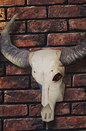 BULCK - Nr. 1 cadeau website | Papieren Buffel Schedel