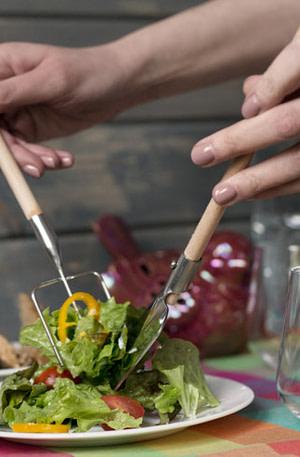 Farmer Salad Set