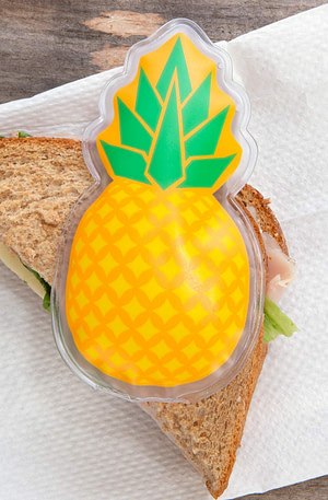 Hot-Cold Pack - Ananas